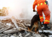 Emergency and Disaster Assistance
